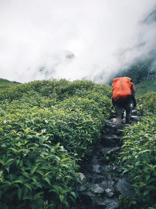 Blog-Hampta-Pass-Manali-Himachal-India-5