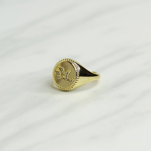 Aquarius Signet Ring