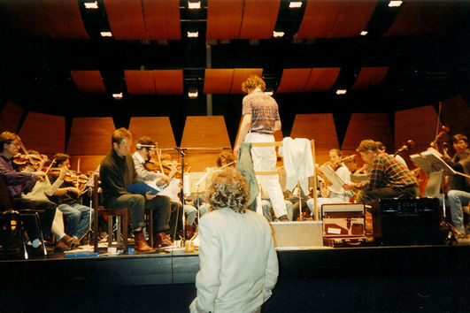 keeping an eye on the orchestra.jpg