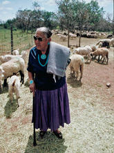 Mary Begay following the blessing she performed on all of our sheep before starting the grazing on the base of the sacred mountain, Dibe'ntsa' (Mt. Hesperus, CO)  in the spring of 1995.  Sheep started grazing near the old Fort Lewis, CO cattle pastures.  Many flocks of Dine' sheep plus the Navajo Sheep Project nucleus flock grazed on this land for the summer and fall of 1995.