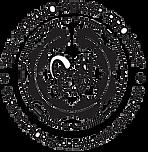 NSP Logo 1 Outline.png
