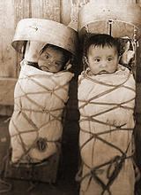 Diné twin babies in their cradleboards near Pinon, AZ (1910)