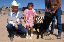Doc McNeal is presenting gifts of a mini-starter flock from the Navajo Sheep Project for Winifred Bessie Jumbo at 5 years of age, and her family, and she gave Doc the 4th Two Grey Hills tapestry she's woven during her 4th year on Mother Earth.  This was taken at Two Grey Hills, NM in 1993.