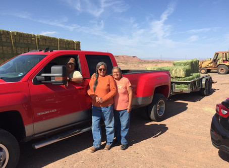 Hay Distribution Updates For Navajo-Churro Shepherds