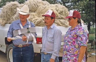 Irvin and Marjorie Curley and Doc McNeal evaluating their wool clip in spring 1993 near Ganado, AZ.
