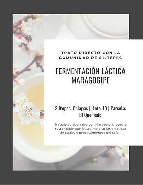 ML10 Matapalo   WBrC   [Floral]