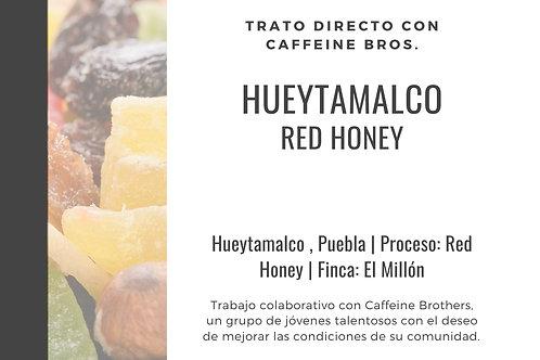 Hueytamalco | Red Honey | [Frutas Secas]
