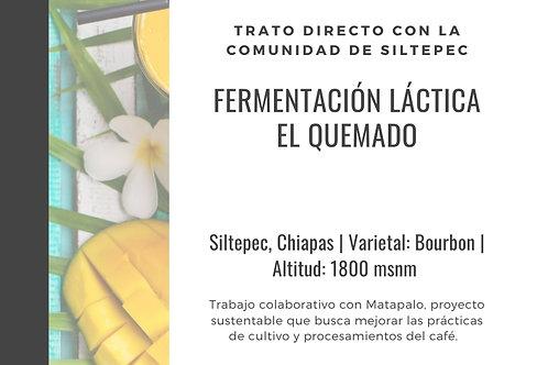 BL12 El Quemado | WBrC | [Tropical]