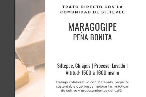 ML04 Peña Bonita | Maragogipe | [Brown]