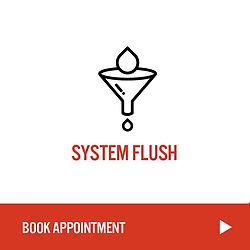 SystemFlush.png