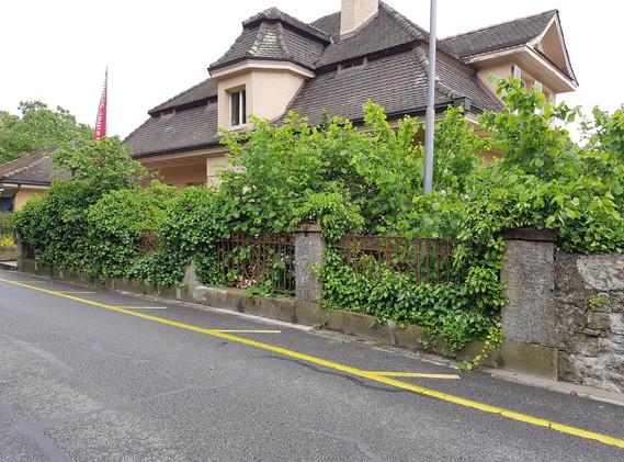 Stützmauer Schützengasse bei R. Steiner-Schule, Biel