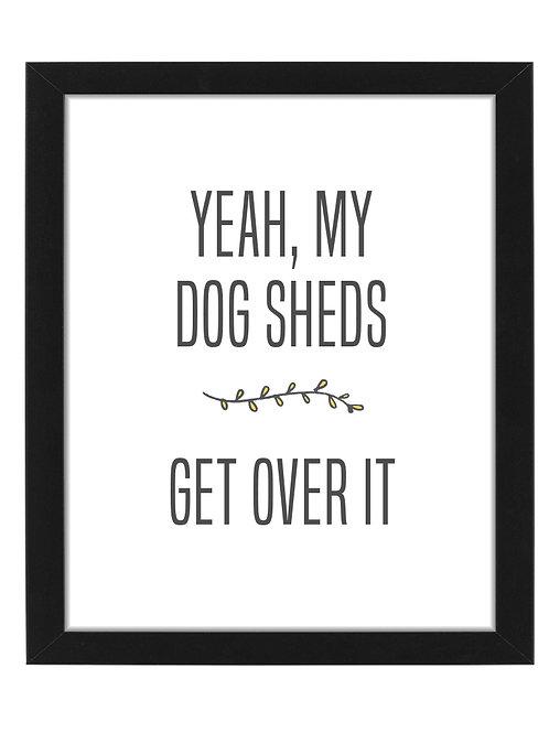 My Dog Sheds