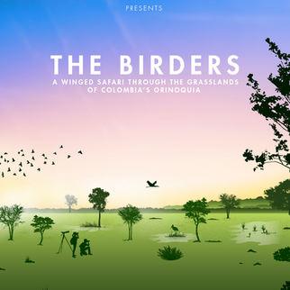 The Birder Orinoquía