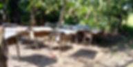 Melo Africa 3.jpg