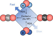 Isotope Effects in Plasmonic Photosynthesis