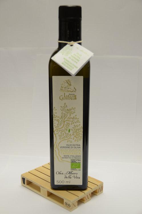 """Olio Extra Vergine di Olive Taggiasche - Extra Virgin """"Taggiasche"""" Olive Oil"""