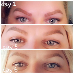 Check out this Brow Journey... Combo Bro