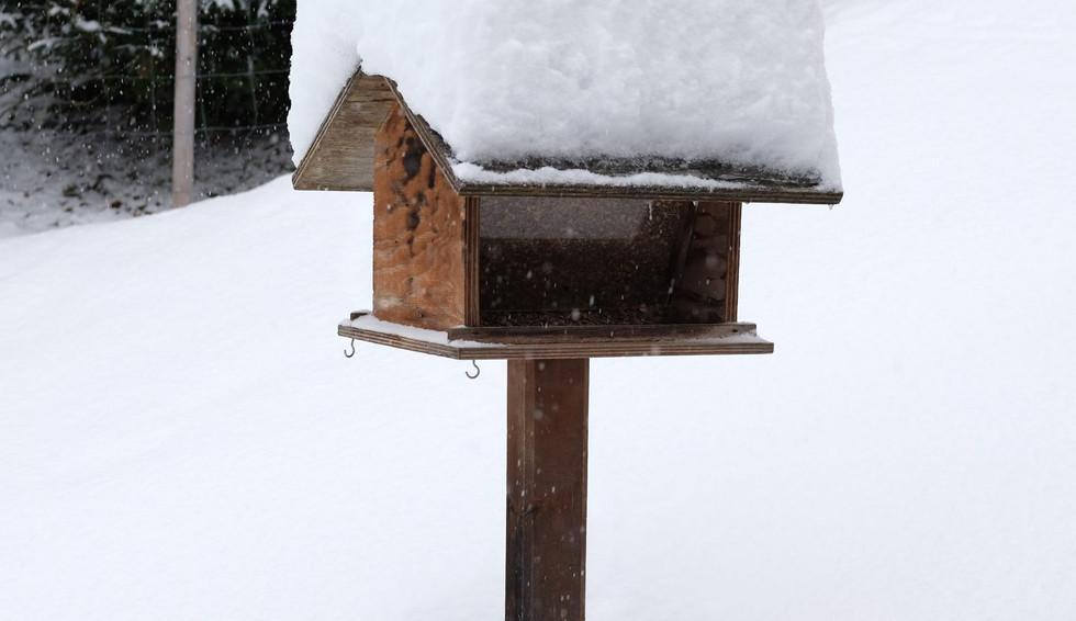 Vogelhaus im Schnee