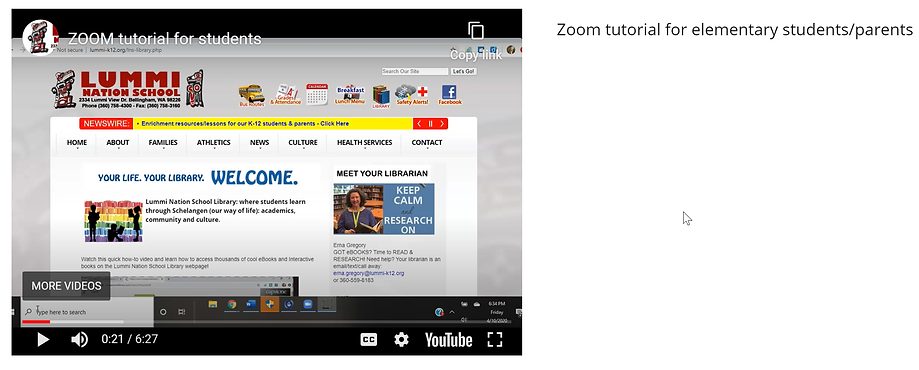 zoom_tutorial_image.png
