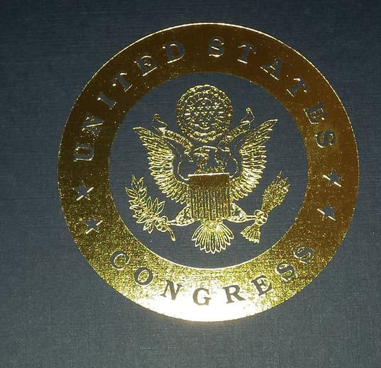 Congressional Recognition from US Representative Debbie Lesko