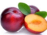 plum.jpg