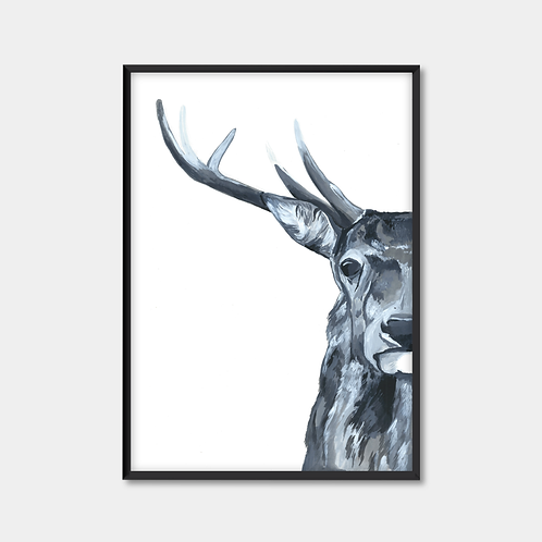 Black & White Stag