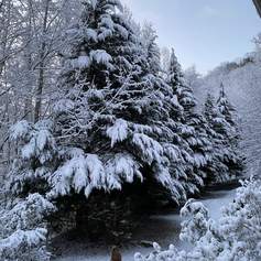 Winter at Bella Vista