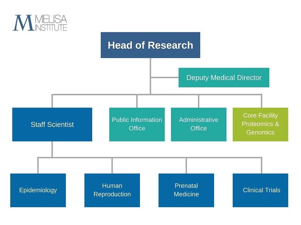 Organizational Chart.jpg