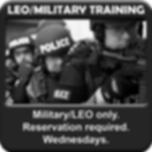 LEO training.png
