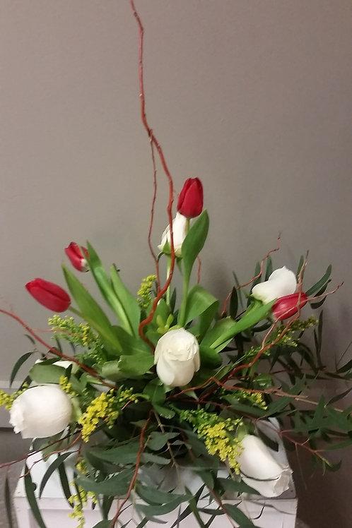 Tulip Trumpet