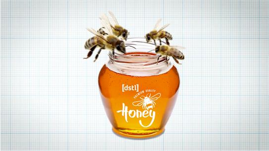 DSTL - Unexpected Science: Honeypots