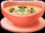 SOPA 5.png