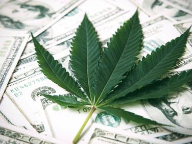 "New ""Cannabis Legalization"" in Virginia, USA"