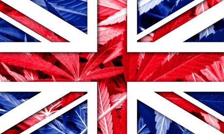 Is The United Kingdom Being Flooded With High Potency Cannabis?