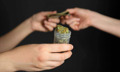 Where To Buy Legal Weed In California On January 1