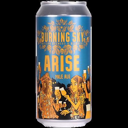 Burning Sky - Arise. 4.4%