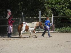 equitation23