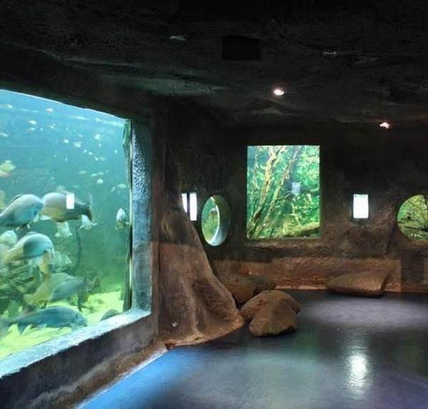 3.Aquarium