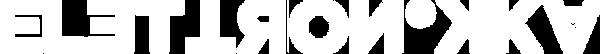 Elettronikka logo