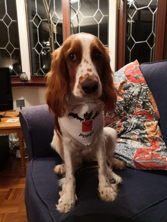 Poppy - Leader of 'Watchdogs for Democracy'