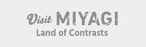 visirt_miyagi_logo.png