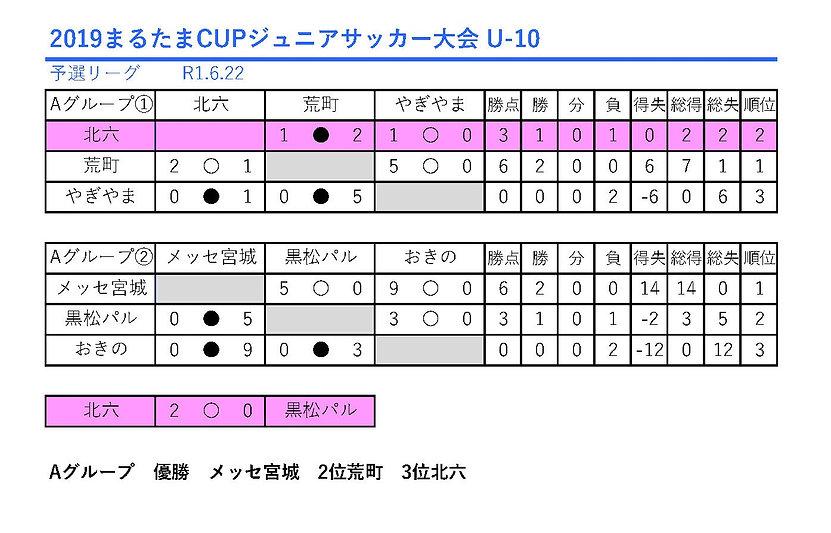 0622.2019まるたまCUPジュニアサッカー大会_U-10.jpg