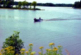 Swan Lake3.JPG
