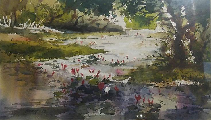 Jahangirnagar Lake  17