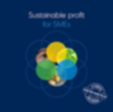 Sustainable profit for SMEs, a useful step-by-step plan ISO 26000