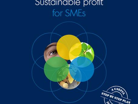 Duurzame Winst voor MKB vertaald