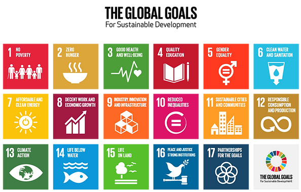 The Global Goals van de VN