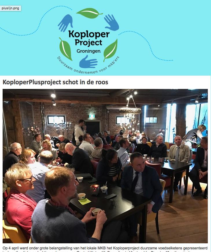 Nieuwsbrief Koploperproject Groningen mei 2017