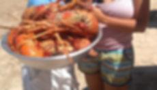 lagosta, guido, boipeba, barraca das lagosta, lagosta grande, morro de sao paulo, volta a ilha, passeio das ilhas, morro paseios