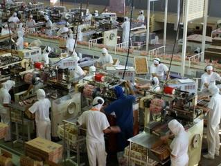 População produtiva brasileira cairá a partir de 2023